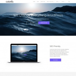 Shapely – Одностраничная тема WordPress